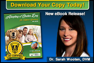A banner with the eBook and the Dr. Sarah Wooten, DVM.