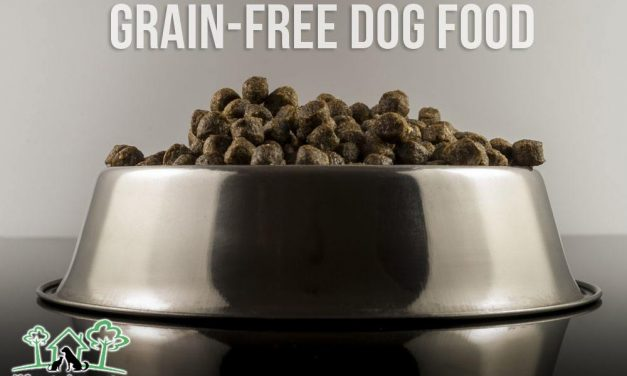Grain-Free Dog Food