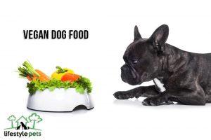 A black dog looking a bowl full of whole veggies.