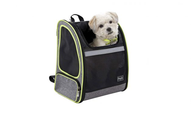 The Best Small Dog Backpack Carriers of 2019